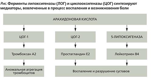 блокировка липооксигеназы