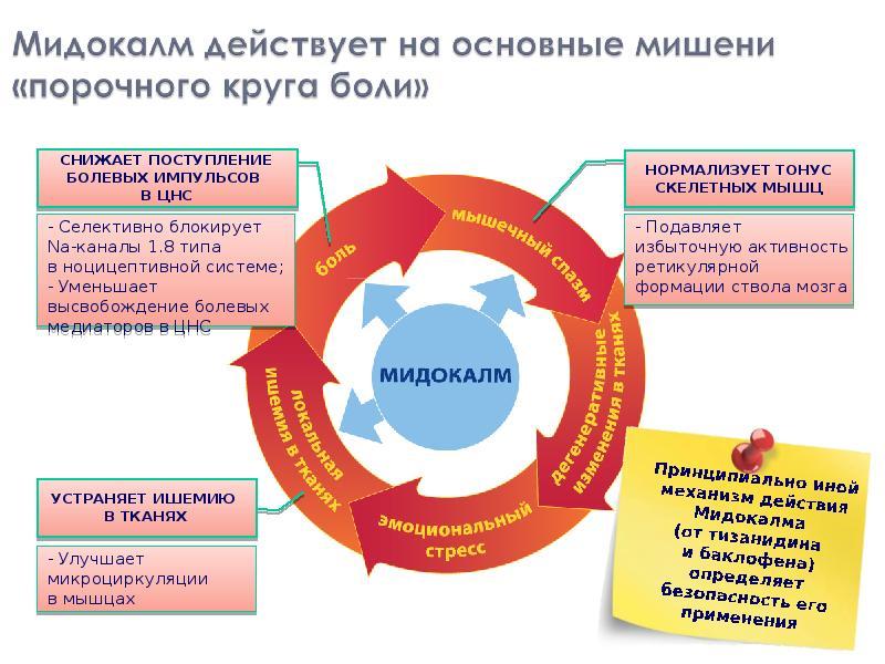 Мидокалм принцип действия