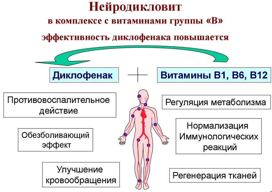 Нейродикловит состав и применение