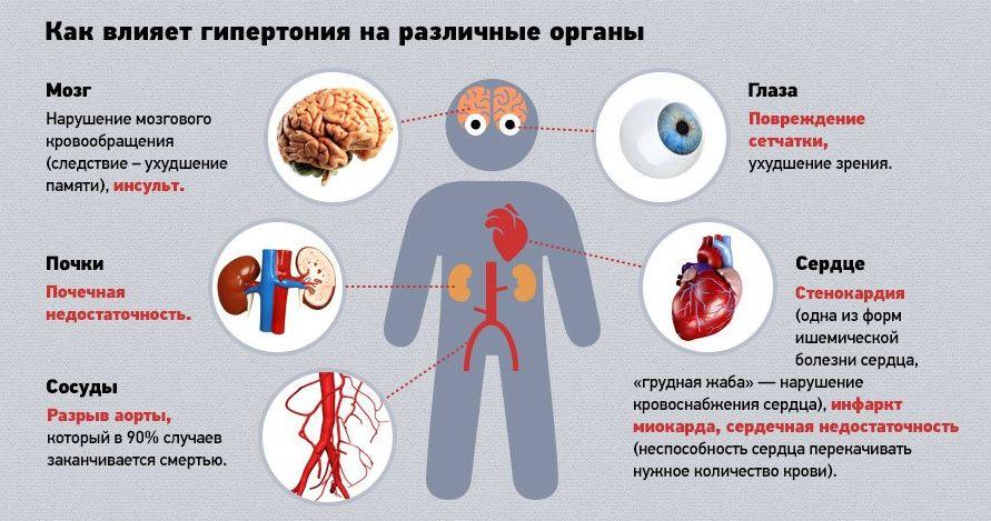 Органы мишени при гипертензии