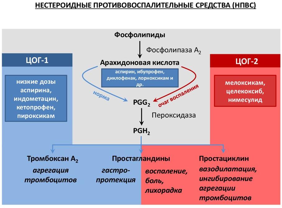 диклофенак механизм действия